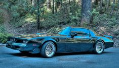 1977 Pontiac Trans Am DHC Means Streets Black Out Edition 77 Pontiac Firebird Trans Am Coupe Movie Used Amazing Car - Mean and Low ! Firebird Car, Pontiac Firebird Trans Am, 1977 Trans Am, Cool Car Pictures, Car Pics, Buy Used Cars, Black Mirror, Dark Horse, Amazing Cars