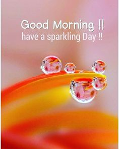 """Good Morning Wishes on Instagram: """"Follow @morningwish365 for much more everyday. #morning #wonderfulday#life #wonderful #beautifulday #beautiful #beauty #morningvibes…"""" Cute Good Morning Quotes, Good Morning Wishes, Beautiful Day, Life, Beauty, Instagram, Beauty Illustration"""