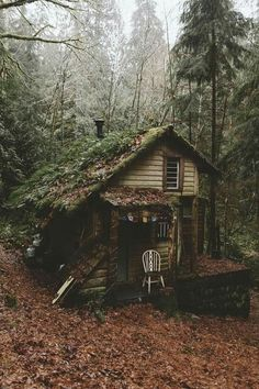 How deep in the forest would you live? Photo by Forest Cabin, Forest House, Forest Mountain, Mountain Cabins, Mountain Climbing, Cabin In The Woods, Cottage In The Woods, Cabins And Cottages, Log Cabins