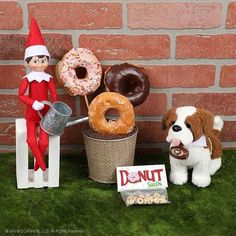 elf-on-the-shelf-ideas-donuts