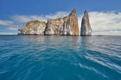 Kicker Rock, located about an hour off of Isla San Cristóbal, is a great diving and snorkeling spot, featuring dozens of species of sharks, to say nothing of the sea turtles and other marine life swimming around.