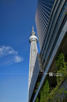"""While I Gazed Into The Blue Sky"" Tokyo Skytree, Japan, image by David Gutierrez #Photography, London Photographer. #Tokyo, #Photographer. #Art #City #Urban #東京 #도쿄 #Токио #Tokio #Japan #日本 #Architecture #Modern #Travel #Metropolis City #Street #Lights #Nippon #Neon #Colour #Color #Asia #Skyscraper #Tower http://www.davidgutierrez.co.uk/"