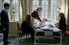 HARRY POTTER AND THE HALF-BLOOD PRINCE, from left: Daniel Radcliffe, Bonnie Wright, Gemma Jones, Rupert Grint, Emma Watson, 2009. ©Warner Bros