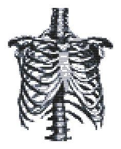 Cross stitch pattern - Rib Cage - Modern Cross Stitch - PDF Pattern. $5.00, via Etsy.