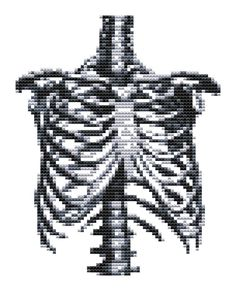 Cross stitch pattern - Rib Cage - Modern Cross Stitch - PDF Pattern. $5.00, via Etsy.