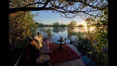 Sindabezi Island Lodge in Zambia is set on a secluded private island in the middle of the Zambezi, this is the only bush camp in the Victoria Falls region and a luxurious and really rather romantic option. Safari Holidays, Victoria Falls, African Safari, Luxury Travel, Lodges, Sunsets, Island, World, Camps