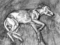 View Eli by Lucian Freud on artnet. Browse more artworks Lucian Freud from Marlborough Graphics. Animal Art, Fine Art, Figure Painting, Painter, Drawings, Lucian Freud, Lucian Freud Paintings, Art, Etching