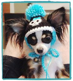 Crocheted Skull Dog or Cat Hats with Pompom