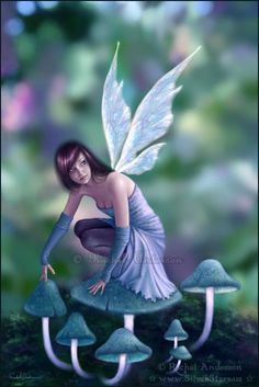 Fantasy Pixie Pictures | Fairy