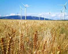 New U.S. Wind Installations Increase Six Times in 1 Year - http://1sun4all.com/wind-water/u-s-wind-increase-six-times-1-year/