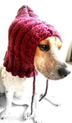 Small dog cowl dog hat pet cowl pet clothing by FruitofPhalanges, $21.00