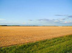 Canadian Prairie