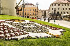 In love with Croatia