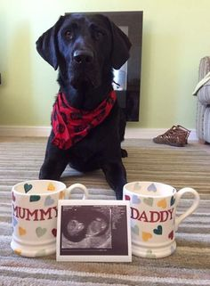 """This is how we announced that we were having a child. All the fav things in our lives and the new mugs topped it off for us x"""
