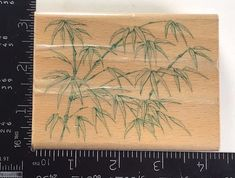 All Night Media Rubber Stamp Bamboo Tree Branches Leaves Asian T726 #AllNightMedia