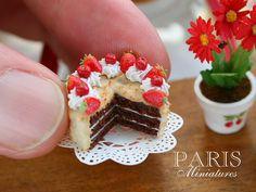 Chocolate cake, tiny food.