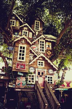 five-story treehouse at Bravo Farms - Google Search