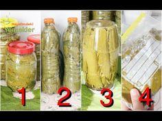 Uzun Ömürlü En İyi Asma Yaprağı Saklama Yöntemleri - Bozulma Yapmayan Üzüm Yaprağı Salamurası - YouTube