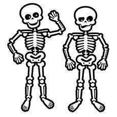 The Skeleton Inside You (Let's-Read-and-Find-Out Science 2