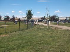 PT JULY 2014 NAMPA IDAHO DOG PARK. THESE BIG DOGS WAS CHASING THE LITTLE DOGS IN THE FENVCE. WELL REALLY THE LITTLE DOGS FELT BRAVE BARKING AND CHASING THESE GERMAN SHEPARDS.