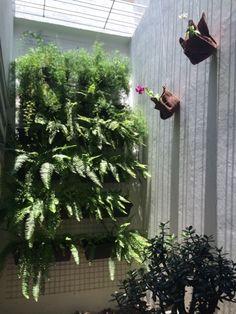 Mais uma arte do feriado. Vamos ver se aprendo a cuidar de orquídeas.