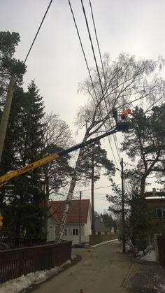ohtlike puude langetamine  #puumehed #ohtlikepuudelangetamine #treesurgery #arborist #treeworks #puudelangetamine #estonia #eestipuud #hysqvarna #treeremoval vt veel www.puumehed.ee