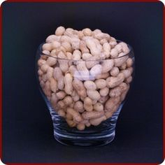 Peanuts In Shell Raw   Jerrys Nut House for making Boiled Peanuts!!!
