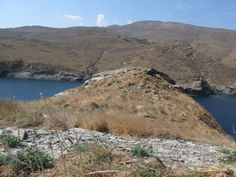 Central Andros island - Important Bird Areas of Greece - Hellenic Ornithological Society