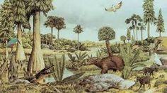 La vegetacion tenia una importancia muy grande debido a las diviciones de seres herbívoros y carnívoros.