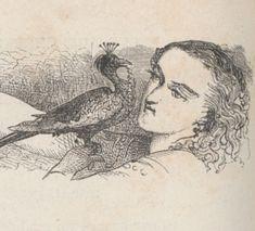 Contes de fées tirés de Claude Perrault, de Mme D'Aulnoy et de Mme Leprince de Beaumont   Gallica