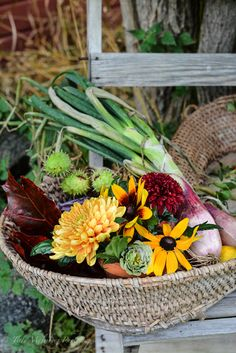 Country in Autumn ~ fresh from the farm