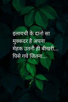 Absolutely janaab It's Karishma of kudrath ka. True Feelings Quotes, Motivational Quotes For Success, People Quotes, Inspirational Quotes, Hindi Quotes On Life, Poetry Quotes, Life Quotes, Hindi Qoutes, Quotes Quotes