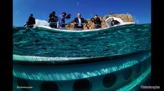 NEMO - Submarine Turkey - Antalya - Turistik Denizaltı