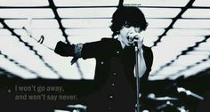 I won't go away and won't say never