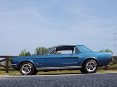 Classics - We Sell Classic Cars Worldwide! Blue Mustang, Ford Mustang Coupe, Mustang Fastback, Mustang Cars, Mustang 1966, Mustang Bullitt, Best Muscle Cars, American Muscle Cars, Mustangs