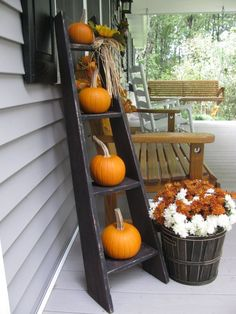 Fall/Thanksgiving Outdoors | Ladder.