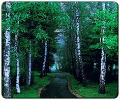 """Wild Journey Into Nature Customizable Gaming Mouse Pad Thick Mouse Mat 240x200x3mm(9.45""""x7.87""""x0.12"""") by iCustom&Shop Mouse Pads http://www.amazon.com/dp/B00XBBCGWK/ref=cm_sw_r_pi_dp_qDkKvb10ZT8VC"""