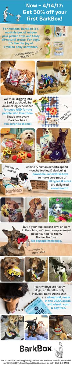 Start any multi-month BarkBox plan by 4/14 and get 50% off your first month's box! It's the PAWFECT time to start surprising your dog with a monthly box of unique toys and all-natural treats.