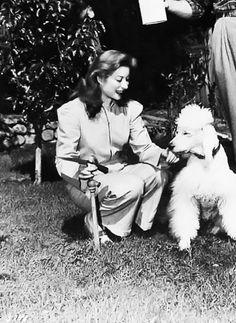 Greer Garson & her poodle!