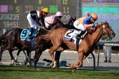 Zagora made her move after the final turn and jockey JJ Castellano raced her by In Lingerie and Marketing Mix to bring home the win.