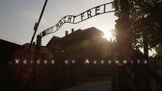 Liberated 70 years ago, only a fraction of the prisoners at Auschwitz survived. Beaten but not broken, they built new lives, new families. But wartime scars changed them -- and their children -- forever . Hear their voices at CNN.com/Auschwitz