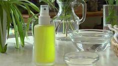 DIY Anleitung: Zitronen Deo selber machen
