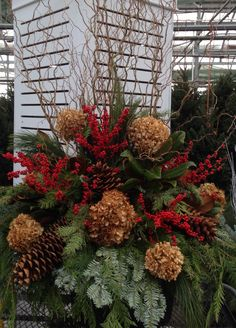 Outdoor Christmas Arrangement Dried Hydrangea, Magnolia, Ilex Berries and Giant Sugar cones.  Tall Curly Willow for height.
