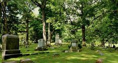Salt Lake City, Present Day, Cemetery, Fairy Tales, Irish, Plants, Summer, Summer Time, Irish Language