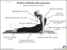 Urdhva Mukha Shvanasana - ÊTRE SOI, le blog du développement personnel