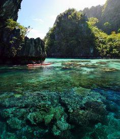 acai-lagoon:  java-jungle:  Active jungle blog    tropical, sandy beaches  ACAI-LAGOON  following back similar