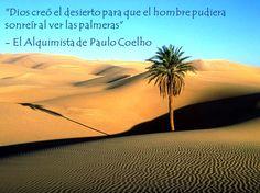 """""""Dios creó el desierto para que el hombre pudiera sonreír al ver las palmeras""""   - El Alquimista de Paulo Coelho"""