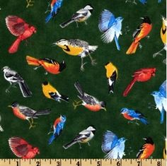 State Beauties State Bird Toss On Green Cotton Fabric