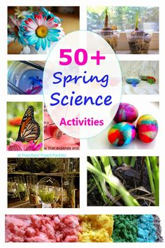 More than 50 fun and engaging spring science activities!  Everything from flowers to seeds to rainbows and more!!  Perfect for preschoolers or older kiddos!