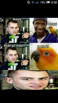 Best Memes, Dankest Memes, Polish Memes, Funny Mems, Smile Everyday, Quality Memes, Some Quotes, I Cant Even, Humor